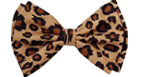cheetahsmallbow